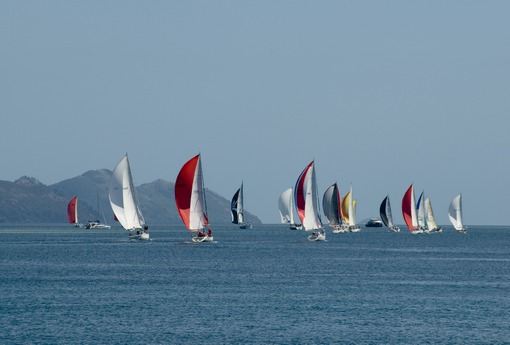 a flotilla of yachts heading on out in a racing regatta